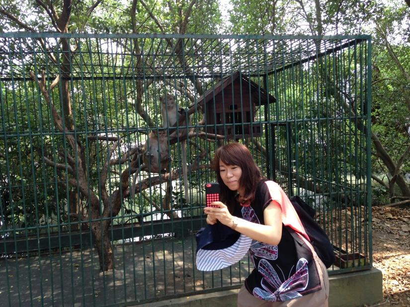 Naomi Taking Selfie with Monkeys