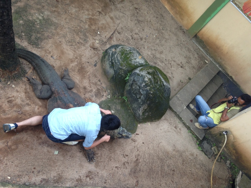 Shouta bravely took pictures with Komodo Dragon while the guide TERRIFIED