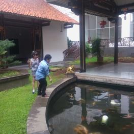 Jakarta Free Walking Tour - Chinatown
